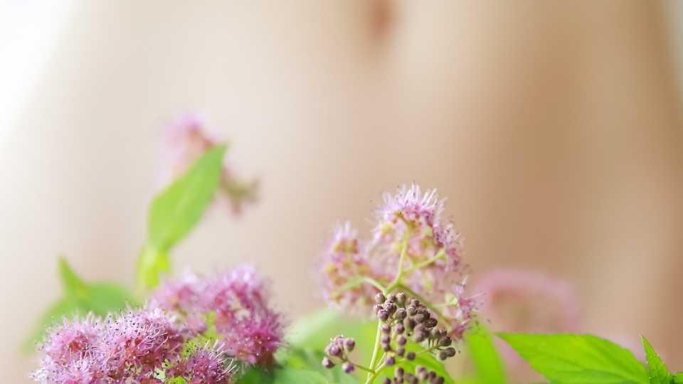 Bauch mit Pflanzen bedeckt